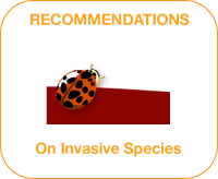 Invasive Species policy recommendations